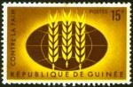 ffhc1963-guinea1