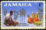 ffhc1963-jamaica1