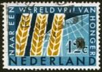 ffhc1963-netherlands1