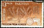 ffhc1963-pakistan1