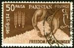 ffhc1963-pakistan2