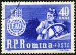 ffhc1963-romania1