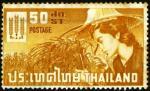 ffhc1963-thailand1