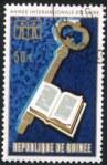 iyb1972-guinea3