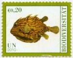 IYB2010-UN-Vienna-2